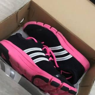 Adidas của averyvyle3112 tại Hồ Chí Minh - 3134383