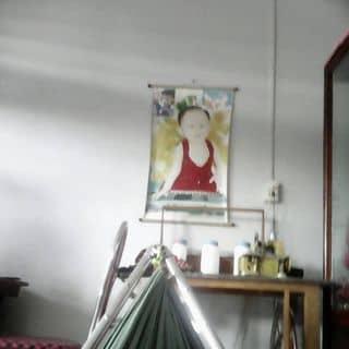 Anh dep  của nguyenthaitoan2 tại Sóc Trăng - 3231109