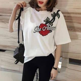 Áo phông của phuongbabie2 tại Điện Biên - 3460890