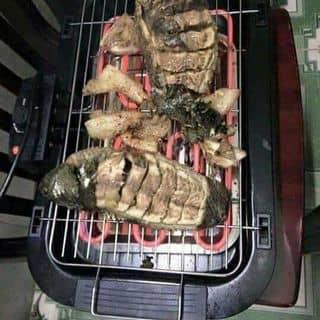 Bêp nuong không khói, bếp nương Samsung  của gaucon1232017 tại Quảng Nam - 3044309