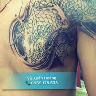 Cá chép hoá rồng của taymonxilip tại Thái Nguyên - 2224561