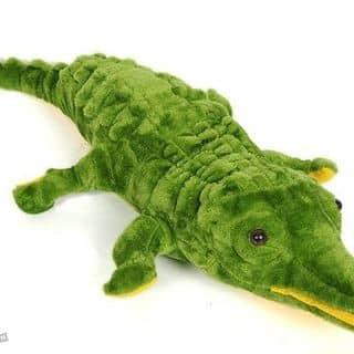 Cá sấu bông của alisonley tại Hà Nam - 1858825