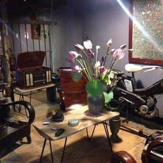 Cafe chất lừ của dinhdzuongkts tại Số 04, ngõ 6 đường Phan Đình Phùng, Thành Phố Hà Tĩnh, Hà Tĩnh - 4824068