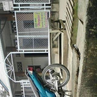 Cần ra đi em nó của deustapssonqsdeus tại Shop online, Thành Phố Vĩnh Long, Vĩnh Long - 2126597