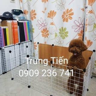 Chuồng chó  của tien.tran2803 tại 300A Nguyễn Tất Thành, Quận 4, Hồ Chí Minh - 3828869