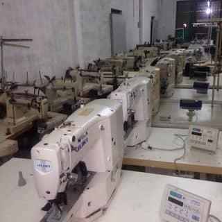 Chuyên bán máy may công nghiệp của hoangthem1 tại Thanh Hóa - 3051741