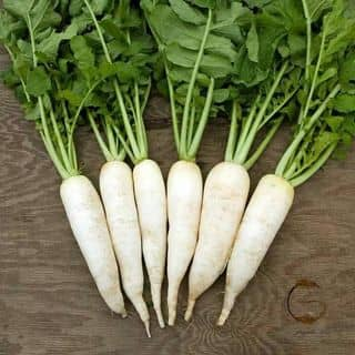 Củ cải trắng siêu ngọt cho mùa hè thật ngọt ngào nha Củ lá tất cả có thể luộc ăn non hoặc để già muối dưa  Thu hoạch sau 1 tháng gieo hạt các bác nhé. 45k/ gói. của hannguyen211 tại Bình Định - 3853192