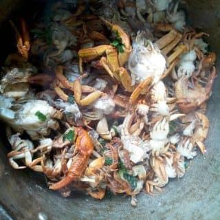 Cua cà mau bao ăn của linhthien17 tại 102 Đại Lộ Thịnh Lang, Thành Phố Hòa Bình, Hòa Bình - 4622868