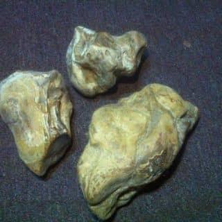 Đá phong thuỷ của vinheric.truong tại Lâm Đồng - 2503179