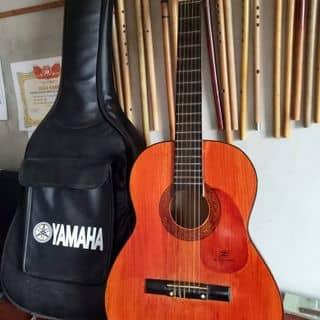Đàn guitar classic  của tungdoduong tại Hải Dương - 3266228
