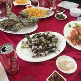 Đồ biển & SAM của munju tại Tràng Vĩ, Thành Phố Móng Cái, Quảng Ninh - 3280356