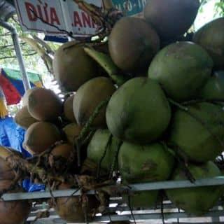 Dừa của nguyenhongthuy22 tại Chợ Trà Vinh, phường 3, Thị Xã Trà Vinh, Trà Vinh - 4873709