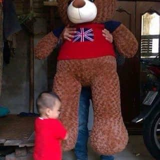 Gấu bông của thefoxdangghethjhj tại Hà Nam - 2368336