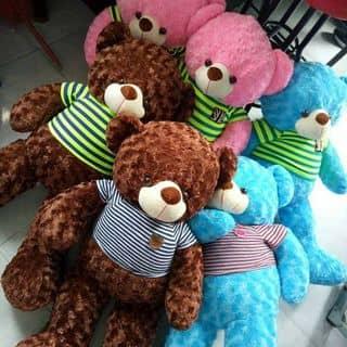 Gấu teddy của lamda2 tại Sóc Trăng - 3639948