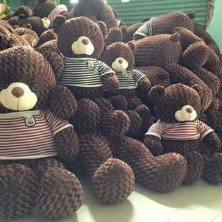 Gấu teddy của kendytrang tại Hải Phòng, Quận Đồ Sơn, Hải Phòng - 2598258