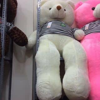 Gấu teddy trắng ❤️❤️❤️ của phuonglinh752 tại Thừa Thiên Huế - 2338299