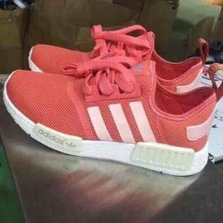 Giày bata thể thao của viyen10 tại Hồ Chí Minh - 3871143