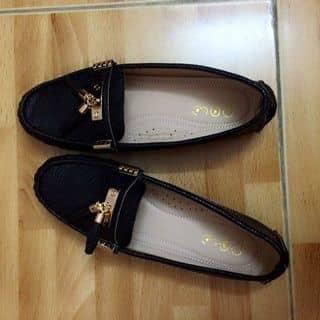 Giày lười của caoha22001 tại Hùng Vương, Tiên Cát, Thành Phố Việt Trì, Phú Thọ - 1175993