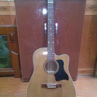 Guitar của daotrung13 tại Phú Thọ - 3004608