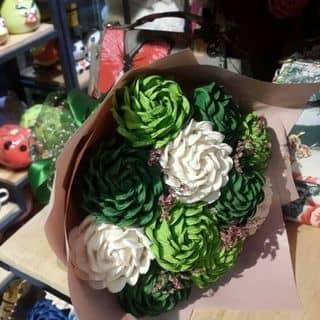 Hoa hồng giấy nhún của thi156 tại Hậu Giang - 2616057