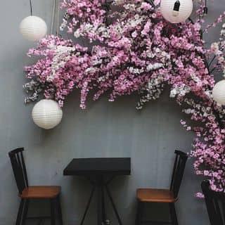 17 quán cafe có view ĐẸP ĐỨ ĐỪ cần check-in ngay trong Tết