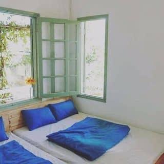 Không gian của thaole89 tại 12/1 Nguyen Dinh Chieu, Thành Phố Đà Lạt, Lâm Đồng - 3048448