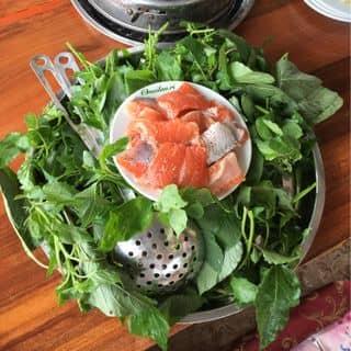 Lẩu cá hồi của mailan.ri tại Sơn La - 4003647