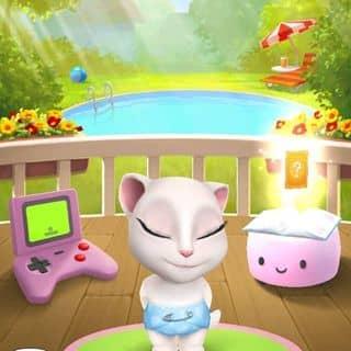 mèo của thinhdv1 tại Ninh Bình - 1473767