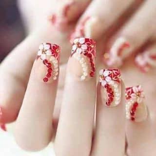 Móng  tay chân giả  của benanhkhie tại Thanh Hóa - 3053229