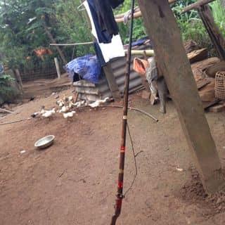 nhích thôi của mafia69 tại Điện Biên - 2100595