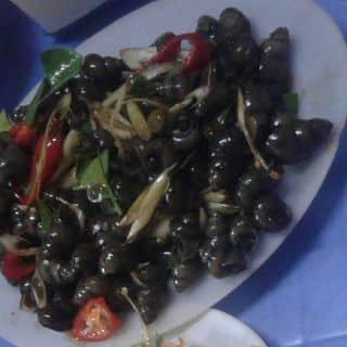 ốc cay của trongveoo tại 364 Thành Công,  Nguyễn Thái Học, Thành Phố Yên Bái, Yên Bái - 1095572