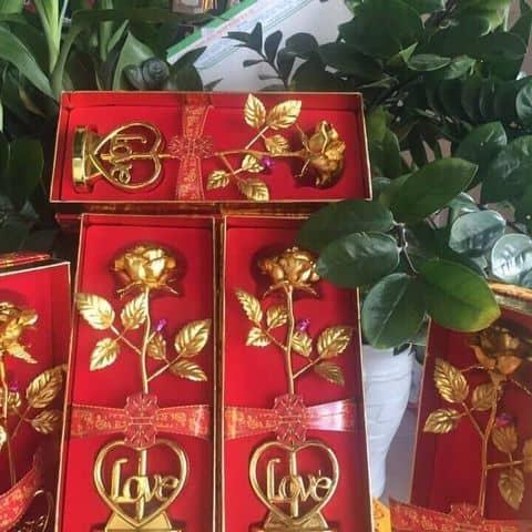 Các hình ảnh được chụp tại 375/2/5b Nguyễn Văn Luông f12 Q6
