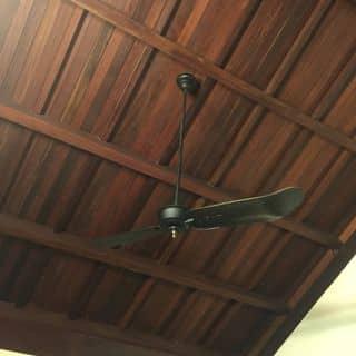 Quat tran 2 canh Marelli Y của ductruong1968 tại Hồ Chí Minh - 2786902