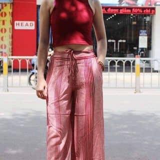 Set quần ống col của quynhlien16 tại Hồ Chí Minh - 3433312