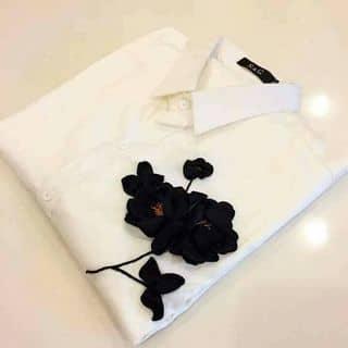 Sơ mi thêu hoa mai của xoanhung2 tại Lạng Sơn - 3278523