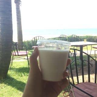 Sữa chua ocean của minhthu105 tại Lê Lợi, Thành Phố Phan Thiết, Bình Thuận - 2829836