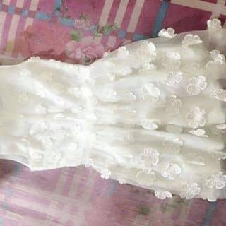 Thanh lí váy của letra21 tại Hồ Chí Minh - 3299634
