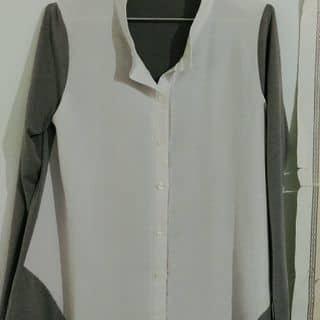 Tshirt của habuchan tại Hồ Chí Minh - 2637471