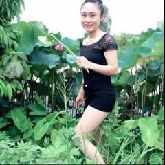 Bông Cúc Nhỏ trên LOZI.vn
