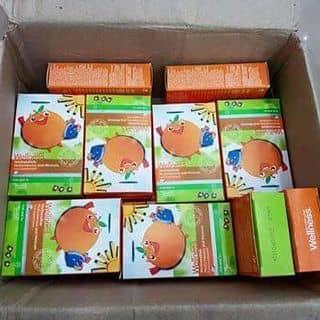 Wellness kids giành cho trẻ biếng ăn,chậm lớn  của lamaimaimai tại Lạng Sơn - 3043231
