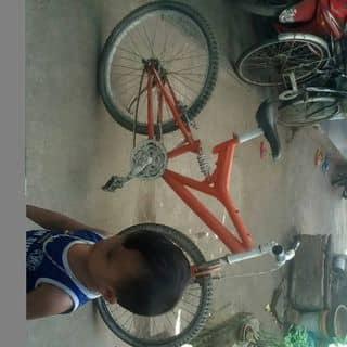 Xe đạp chế của hungnguyen1018 tại Quảng Ngãi - 3719676