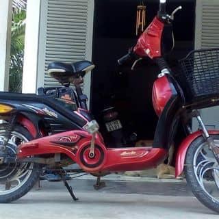 Xe đạp điện  của diepbach9123 tại Tiền Giang - 3757294