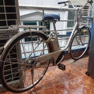 xe đạp điện trợ lực panasonic của vit286 tại Hồ Chí Minh - 3025242