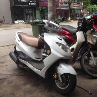 Xe Sunus Z của ngoquangdinh1 tại Bắc Ninh - 3802582